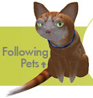 Check out our Following Pets!